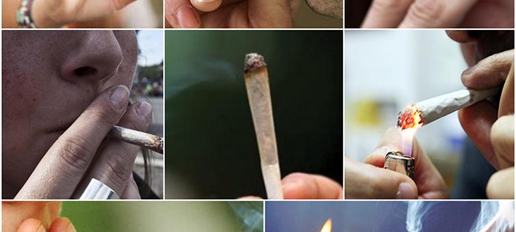 La politica abbia coraggio #fuorilepalle #legalizecannabis